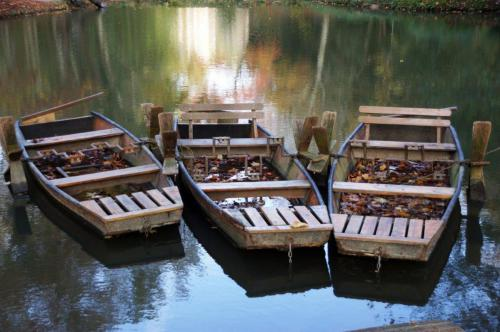 da Vinci Pond Boats