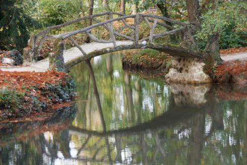 da Vinci Pond Bridge
