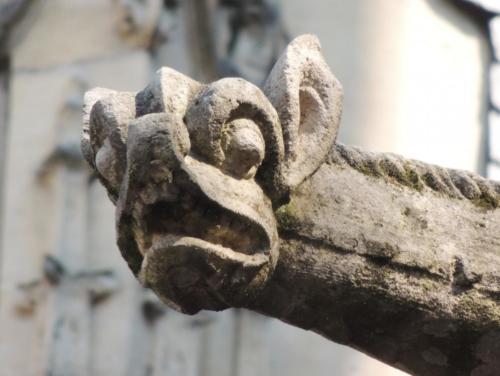 Rouen Gargoyle