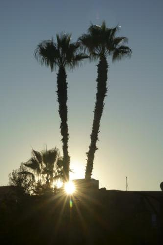 Marrakech Sunrise... and Sunset